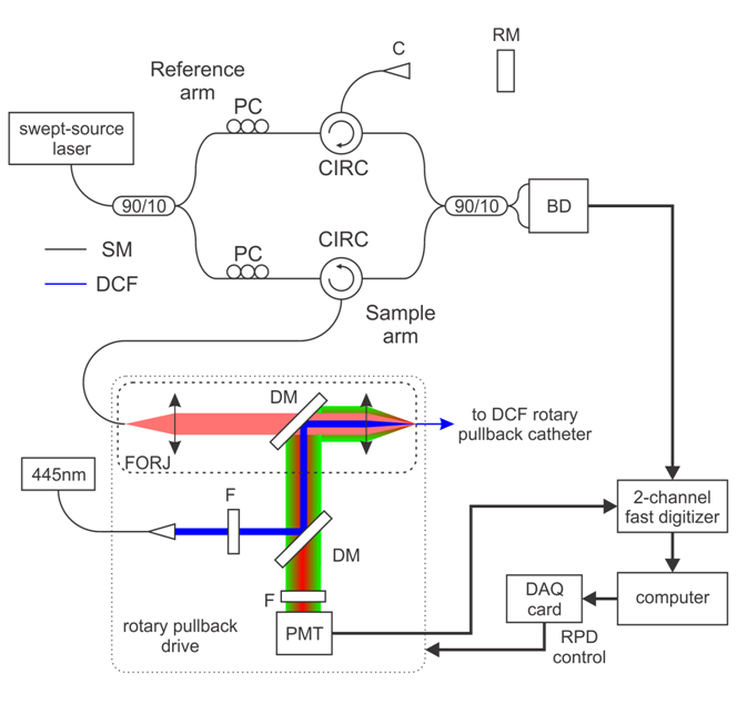 OCT-AFI-Schematic